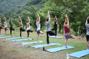 200 hour yoga teacher training in rishikesh.jpg