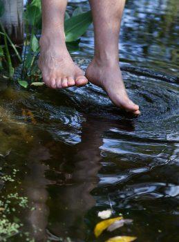 Feet in pond.jpg