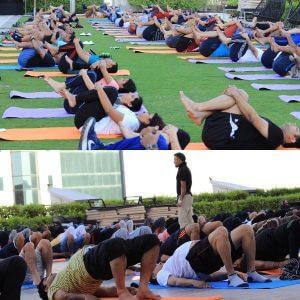 Lifestyle yoga group class.jpg