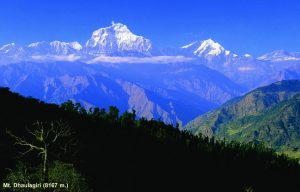 View from Tushita 3 Dhaulagiri.jpg
