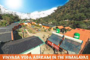 vinyasa-yoga-ashram-yoga-teacher-training-in-india.jpg