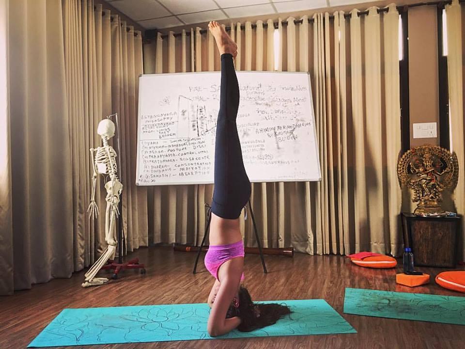 vishwa-shanti-yoga-rishikesh.jpg
