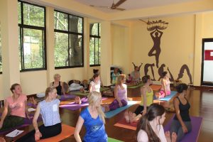 yoga classes at rishikul yogshala.jpg