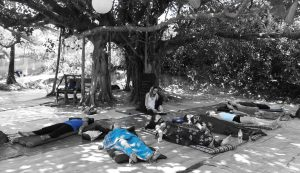 yoga-nidra-teacher-training-india.jpg