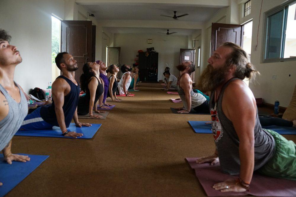yoga school india.JPG
