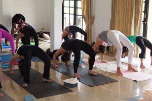 yoga-trainers-india.jpg