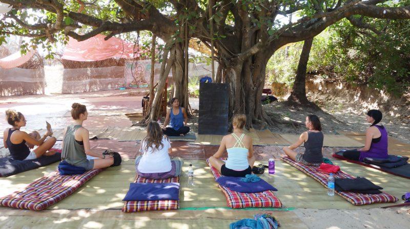 yoga-training-teacher-india.jpg